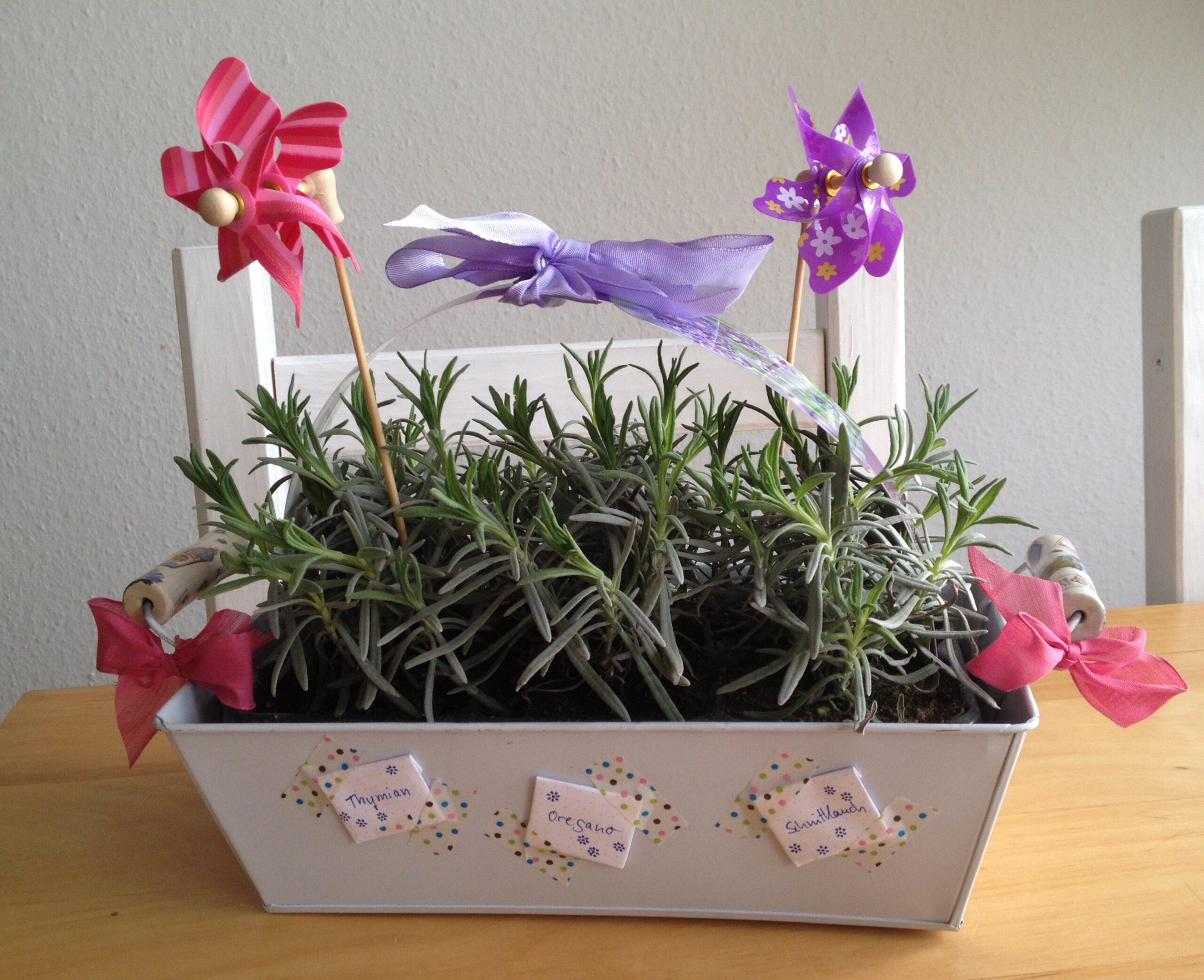 Einweihungsgeschenk für den Garten